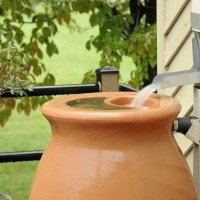 Can I Drink Rainwater?