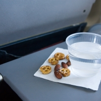 Do Airlines Recycle Passenger Waste?
