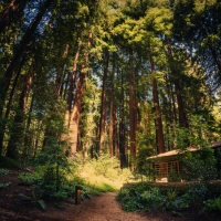 6 Green Travel Tips From Sierra Club Outings and NativeEnergy