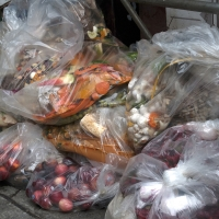What Is Food Waste Costing Us?
