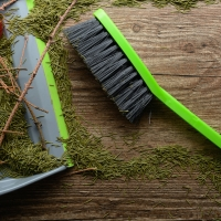 The List: The Ultimate Guide To A Green Holiday Clean Up