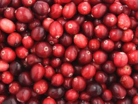 Market Haul: Cranberries