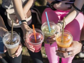 Because You Asked: What's So Bad About Plastic Straws?