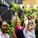 5 Inspiring Green School Projects You Can Help Bring To Life